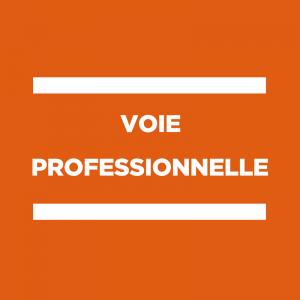 Voie Pro : Accompagnement des collègues de GA