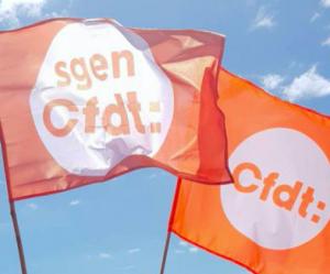 Retraites : toute la CFDT se mobilise le 11 janvier !