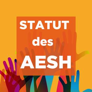 Statut de fonctionnaire de catégorie B pour les AESH