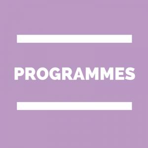 Programmes de Français (lycée)