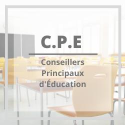 CPE : une professionnalité mise à l'épreuve